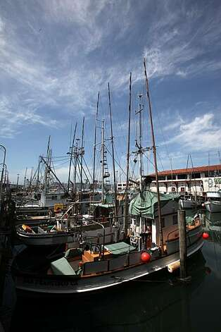 Commercial and charter salmon fishing boats docked at Fisherman's Wharf on Thursday, April 15, 2010.  With the season over, frozen salmon can be had during winter and spring.  Presently, Alaska is starting  their fresh salmon at $10 dollars a pound. Prices falling maybe half for Alaska fresh salmon next month. Photo: Liz Hafalia, The Chronicle