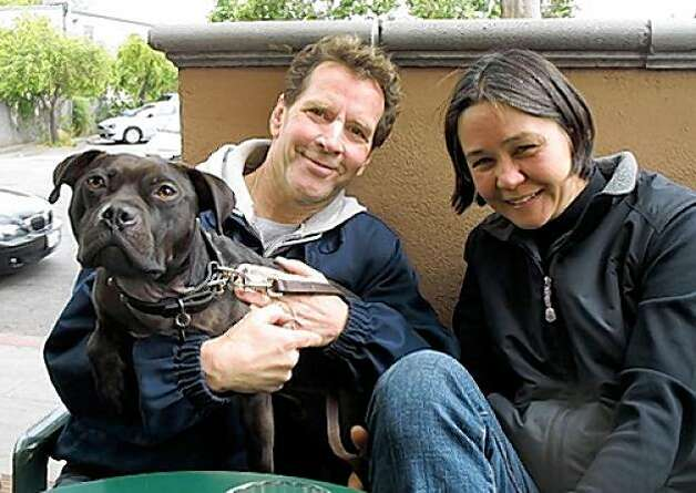 "Audie, the ex-Vick dog formerly known as ""Dutch,"" was adopted by Bay Area dog trainer Linda Chwistek and her husband Bill. Photo: Donna Reynolds"