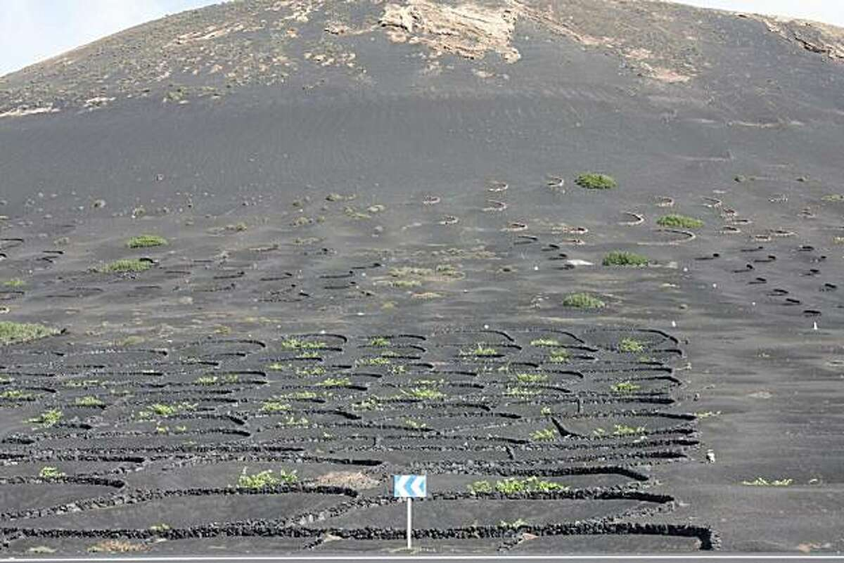 The barren hillside that hosts a vineyards of Los Bermejos, on the volcanic island of Lanzarote in the Canary Islands.