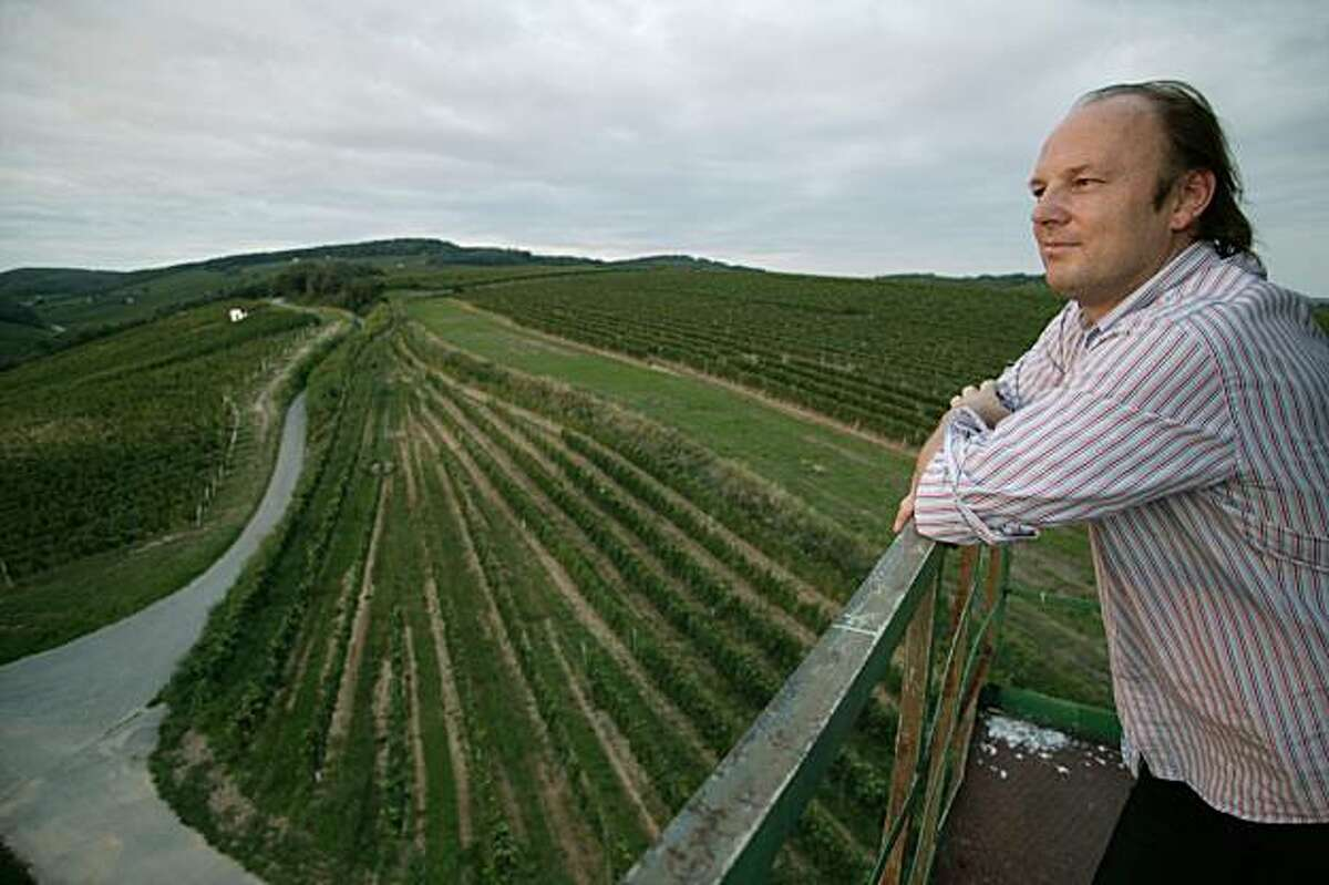 Winemaker Roland Velich of Moric looks over the Neckenmarkt vineyard, source for some of his top red wines in the Burgenland region of Austria.