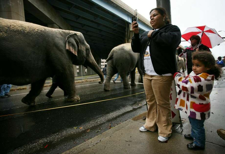 Judis Colon and her daughter Natalia Perez, 3 of Bridgeport, watch the parade of elephants on their way to the Arena at Harbor Yard in Bridgeport, Conn. on Tuesday, October 27, 2009. Photo: Brian A. Pounds / Connecticut Post
