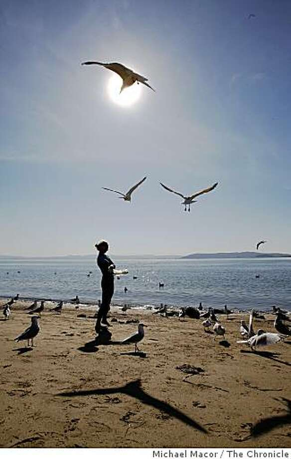 Yolanda Vasquez of Oakland tosses bread to sea gulls at Crown Memorial State Beach in Alameda, Calif. on Tuesday Oct. 22, 2008. Photo: Michael Macor, The Chronicle