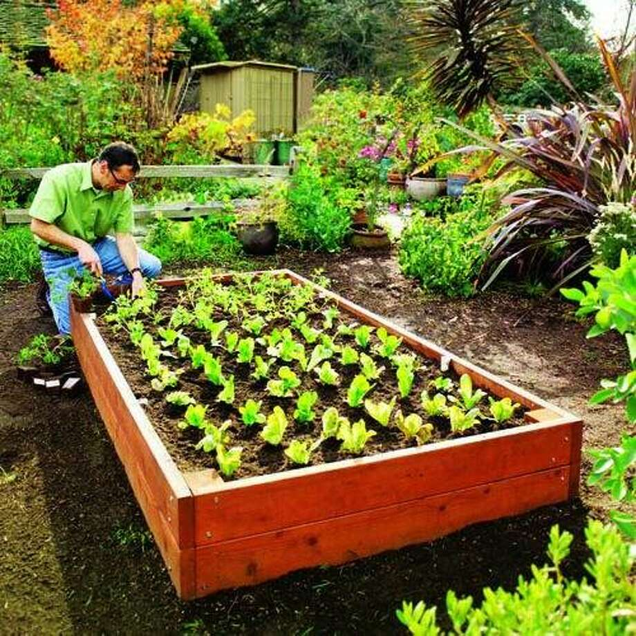 20 Raised Bed Garden Designs And Beautiful Backyard: 20 Best Backyard Projects