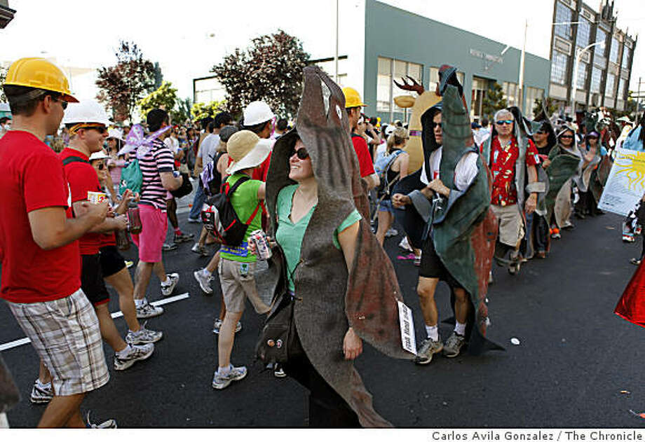 The salmon run upstream during their annual migration at the Bay to Breakers. Photo: Carlos Avila Gonzalez, The Chronicle