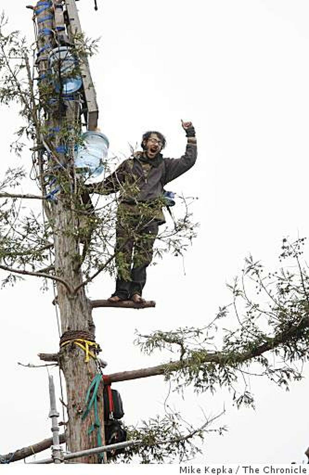 Ending a nearly two year treetop protests, the final tree sitter waves to the crowd below moments before he comes out of the lone redwood tree on U.C. Berkeley campus on Tuesday Sept. 9, 2008 in Berkeley, Calif.