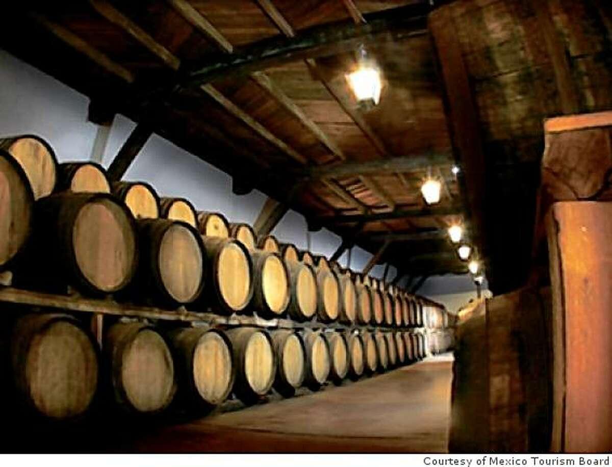 Casa Madero winery, Mexico.