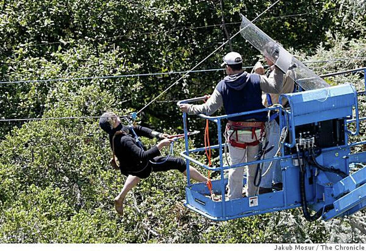 A tree-sitting protester swings a wire cutter at workers as they try to shield themselves from urine being splashed at them from the tree top at a grove outside of Memorial Stadium in Berkeley, Calif. on Tuesday, June 17, 2008.