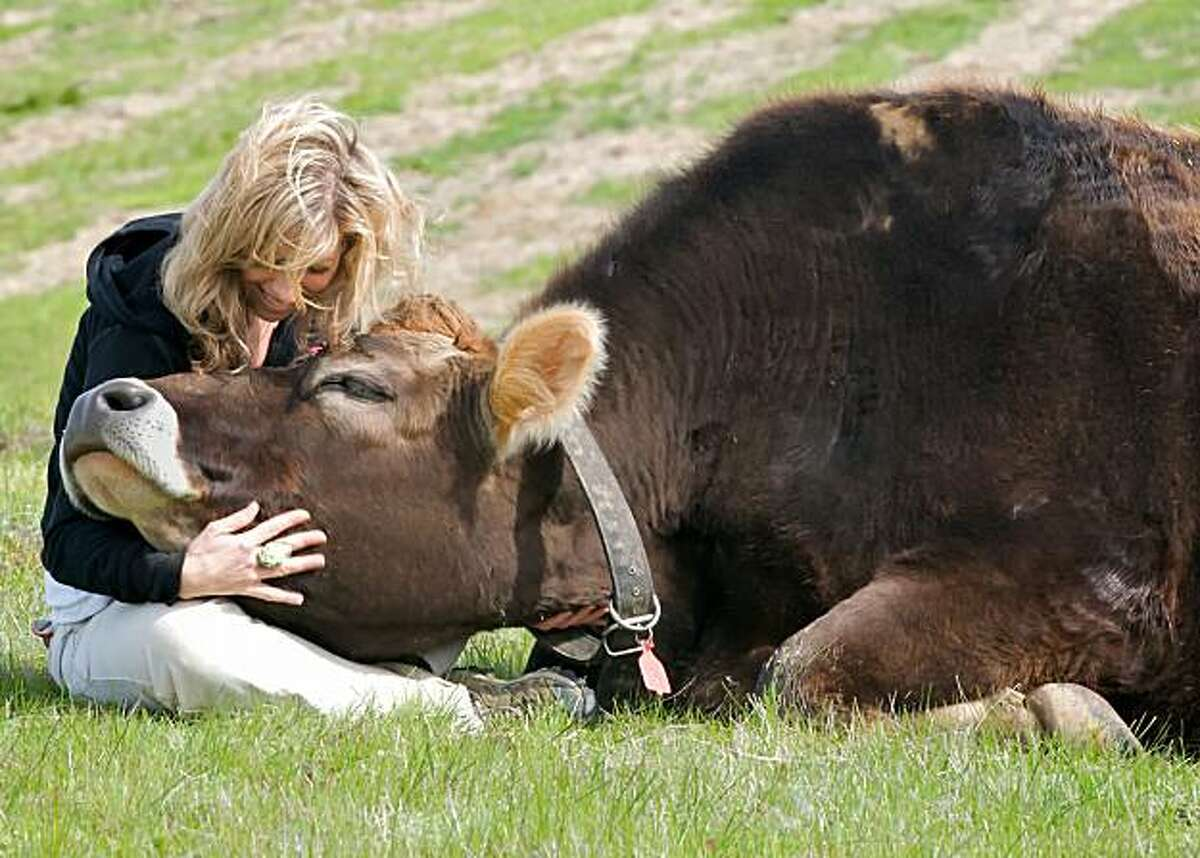 Colleen Patrick-Goudreau, of Compassionate Cooks, with a rescued cow at a farm sanctuary.