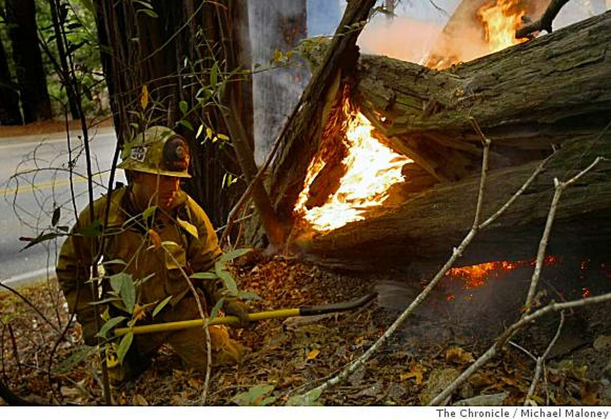 Glendale FD (Calif.) firefighter Gilbert Pedroza uses a shovel to control a back fire burning a downed redwood tree along the east side of Highway 1 near Big Sur, Calif. on July 6, 2008. Nearly 2,000 firefighters try to beat back the out-of-control Basin Complex wildfire near the coastal tourist town of Big Sur.Photo by Michael Maloney / The Chronicle
