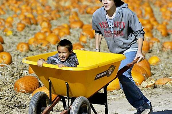 Hunter Cly, of Meridian, Idaho, hangs on as his cousin Quinn Edwards, right, races around the Wissel family pumpkin patch outside Nampa, Idaho.