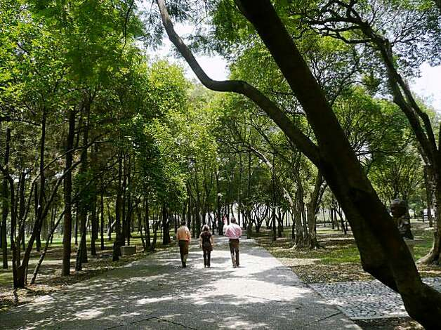 Bosque de Chapultepec in Mexico City. Photo: Christine Delsol, Special To The Chronicle