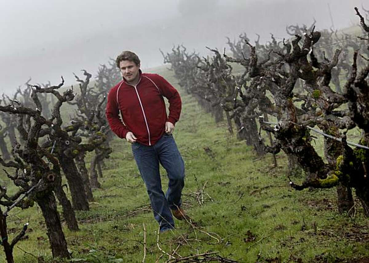 On a foggy winter morning, winemaker Morgan Twain-Peterson walks through his old vineyard in Glen Ellen, Calif., Thursday January 6, 2011. Winemaker Morgan Twain-Peterson uses one of California's oldest vineyards, Bedrock Vineyards, to produce his own unique Zinfandel using minimalist techniques in Sonoma, Calif.
