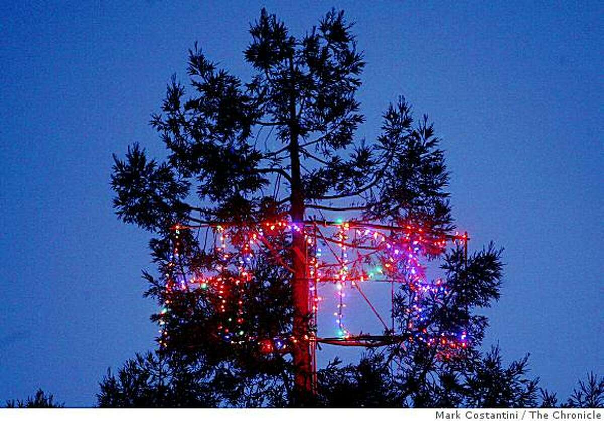 Huge colored lights that spell out �Hope� hang from a tree in tree trimmer Joe Lamb's backyard in Berkeley, Calif. on Friday, December 19, 2008.