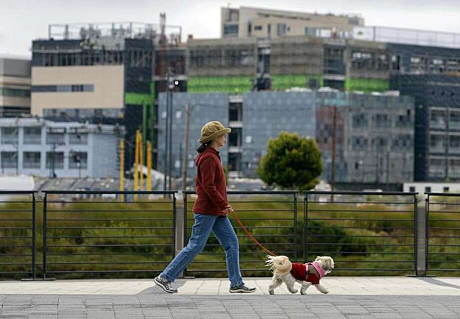 A neighbor walks her dog along Mission Creek while construction continues on the UCSF Mission Bay campus (background) in San Francisco, Calif., on Wednesday, July 29, 2009. Photo: Paul Chinn, The Chronicle