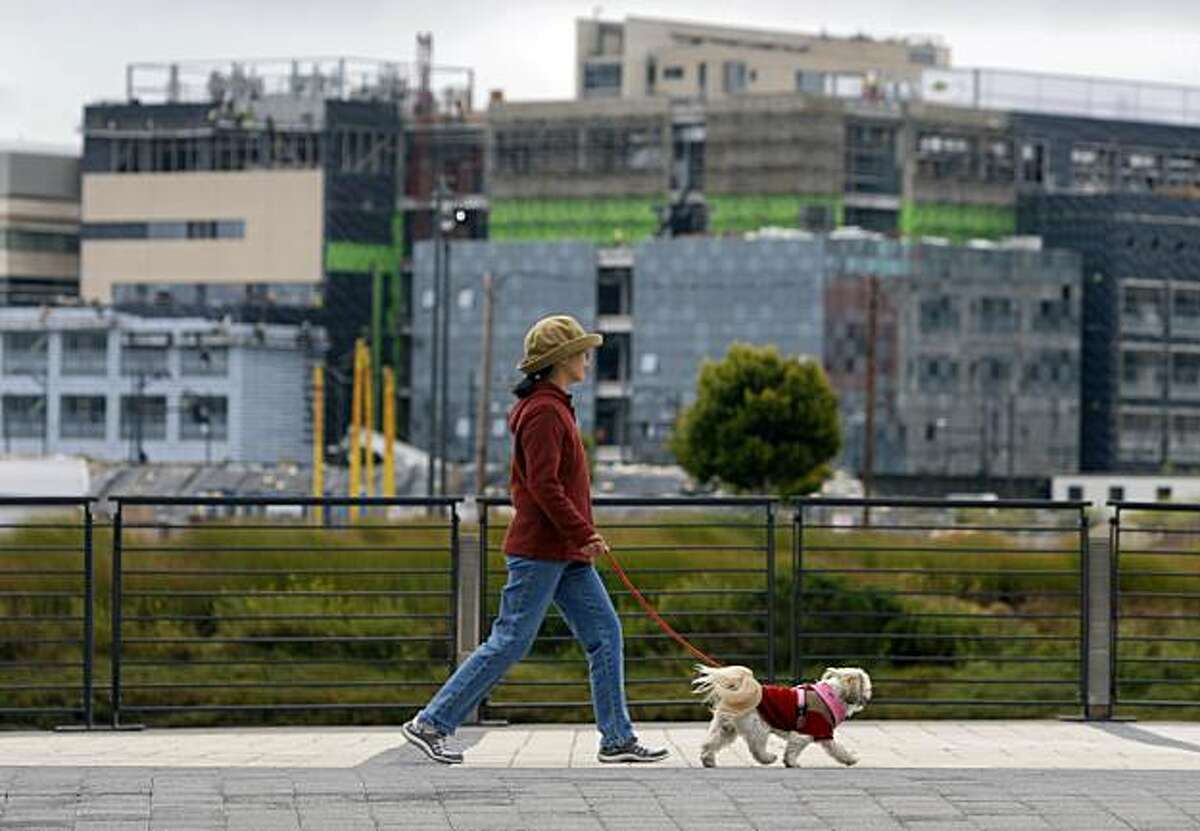 A neighbor walks her dog along Mission Creek while construction continues on the UCSF Mission Bay campus (background) in San Francisco, Calif., on Wednesday, July 29, 2009.
