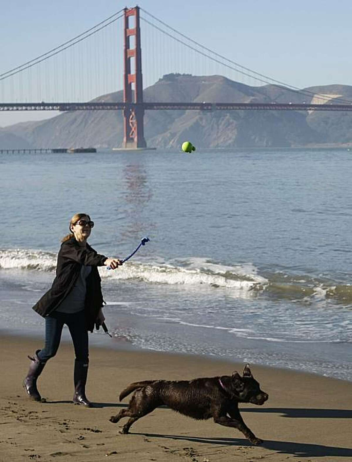 Kathy McCorkie plays fetch with her 3-year-old labrador retriever Charlotte at Crissy Field, part of the Golden Gate National Recreation Area in San Francisco Calif. on Friday, Jan. 21, 2011. McCorkie says she takes Charlotte to off leash areas at least three times a week and pays a professional dog walker to take her out an additional two days.
