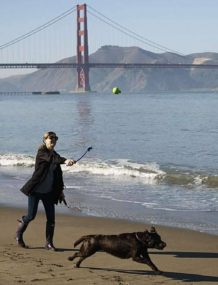 Kathy McCorkie plays fetch with her 3-year-old labrador retriever Charlotte at Crissy Field, part of the Golden Gate National Recreation Area in San Francisco Calif. on Friday, Jan. 21, 2011. McCorkie says she takes Charlotte to off leash areas at least three times a week and pays a professional dog walker to take her out an additional two days. Photo: Alex Washburn, The Chronicle
