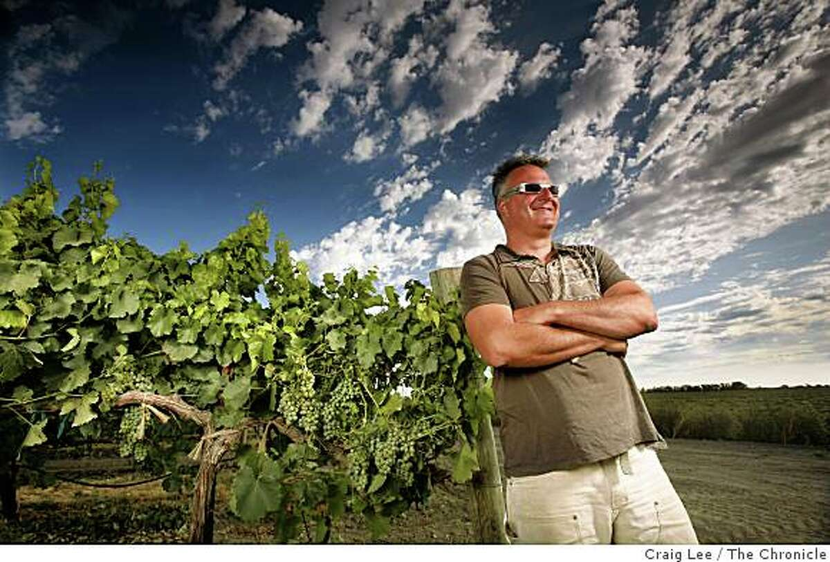 Abe Scholium, winemaker for his Scholium Project wine, next to his verdelho vineyard in Walnut Grove, Calif., on July 29, 2008.