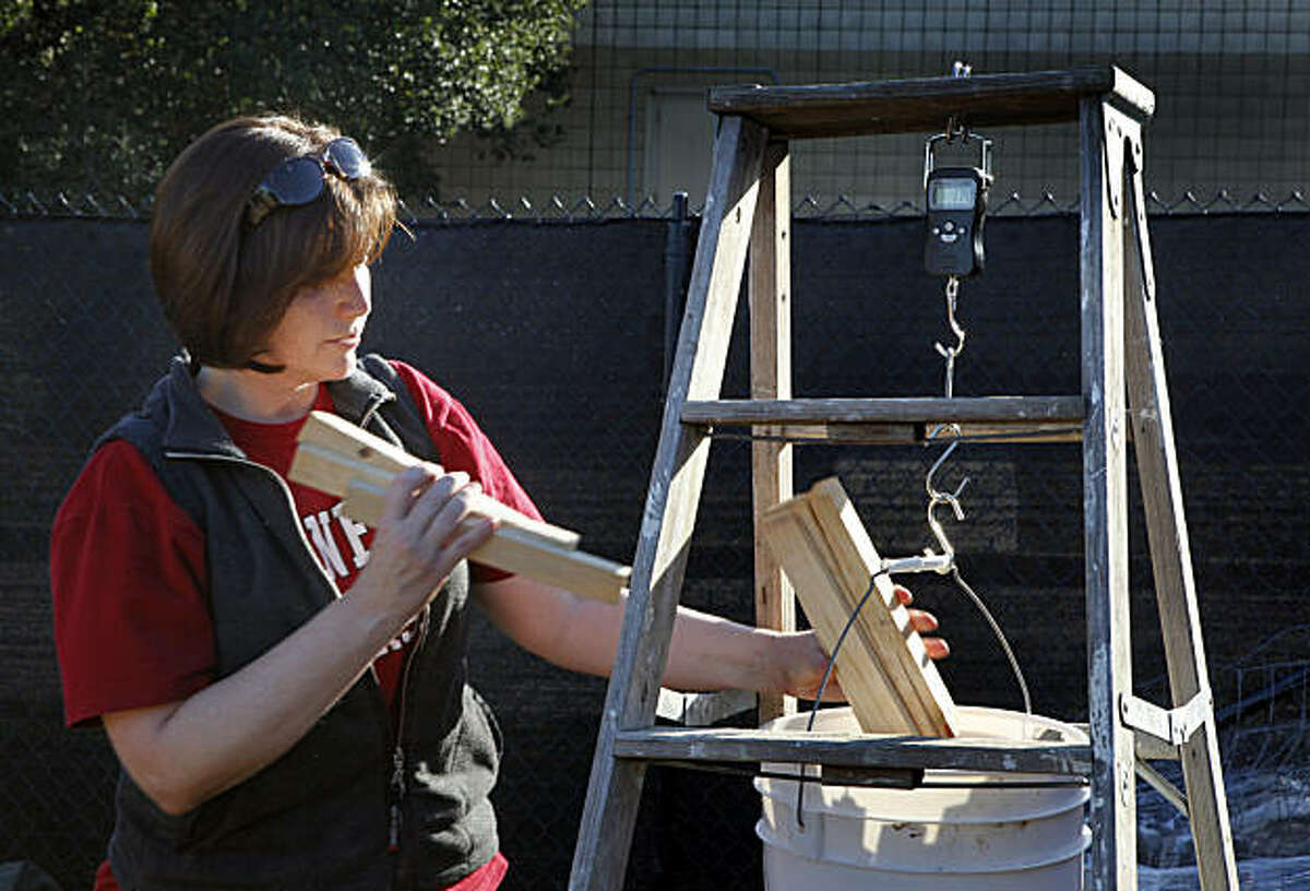 While invading Britain, Roman warriors used a Kiln to cure clay pots. Melissa Chatfield, a Stanford archaeologist, and her students have built a replica Kiln and during the inaugural firing, Chatfield weighs the wood used for the on-campus project. Friday Jan 14, 2011.