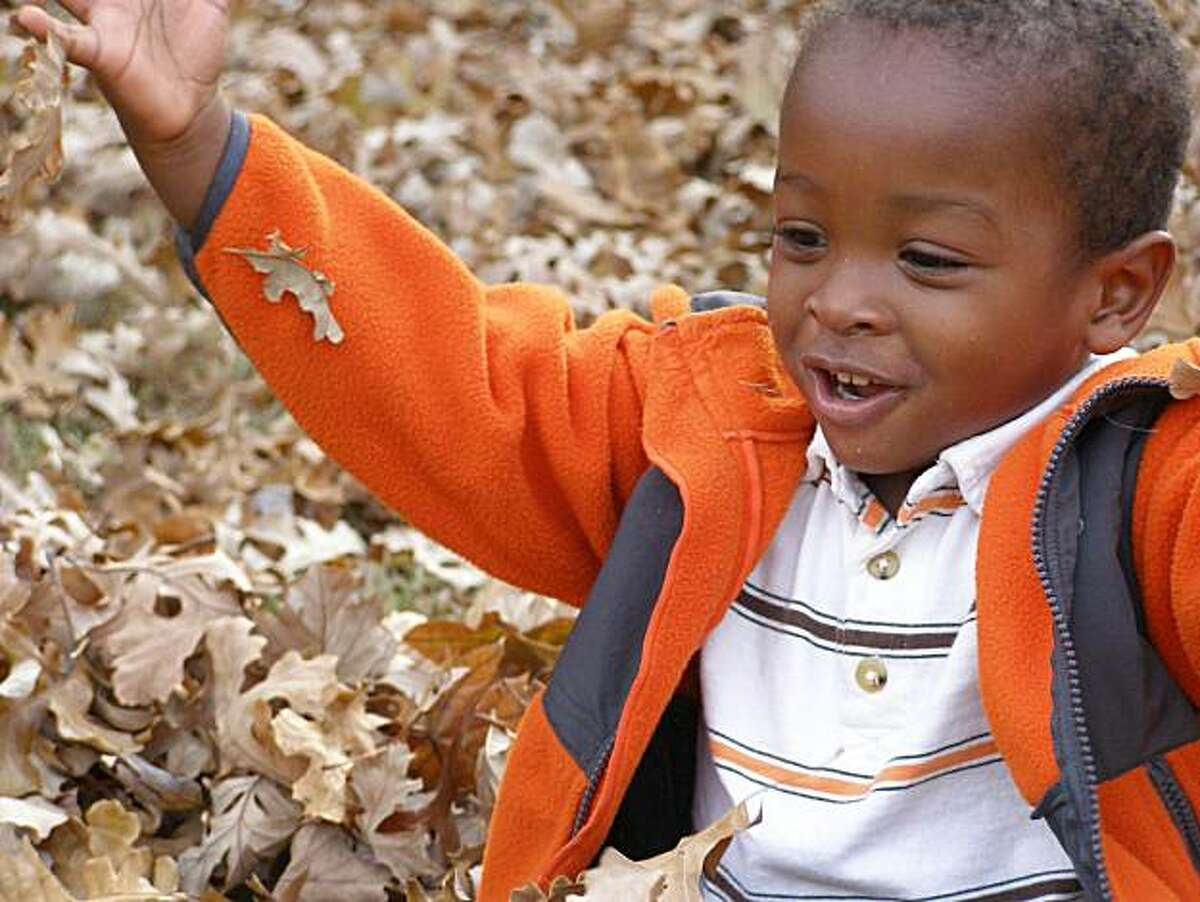 This Nov. 2010 photo provided by Ross Haskell shows his adopted son, Alexander Griffith-Haskell, from Haiti, as he plays in the autumn leaves outside the family's home in Wichita, Kan. One year after crossing over a Haitian ravine filled with bodies, singing hymns to stay calm on a plane to Pittsburgh, then seeing snow for the first time, 54 children rescued from the aftermath of the historic Jan. 2010 earthquake are, for the most part, thriving.