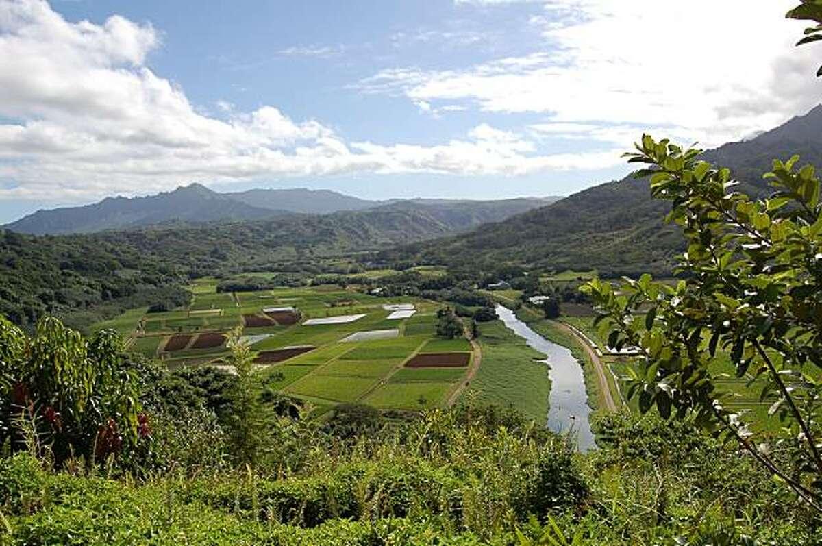 Vegan Travel on the Big Island of Hawaii - vegan-friendly