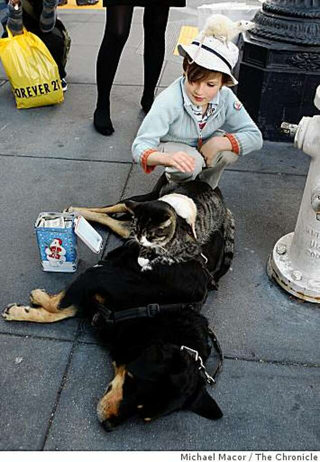 """5-year-old Nicolas Bremeau, of Mountain View, pets the animals as they sleep. Gregory Pike of Arizona brought his """"Booger,Kitty and Moussie"""" show to the corner of Powell and Geary Streets near Union Square in San Francisco, Calif on Tuesday Dec. 10, 2008 for  a public viewing during the holidays. Passers by contributed to a small tin can in exchange for a look at the animals all snuggled together. Photo: Michael Macor, The Chronicle"""