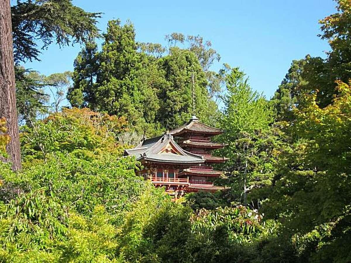 Tea Garden trees are included on Golden Gate Park's new app.