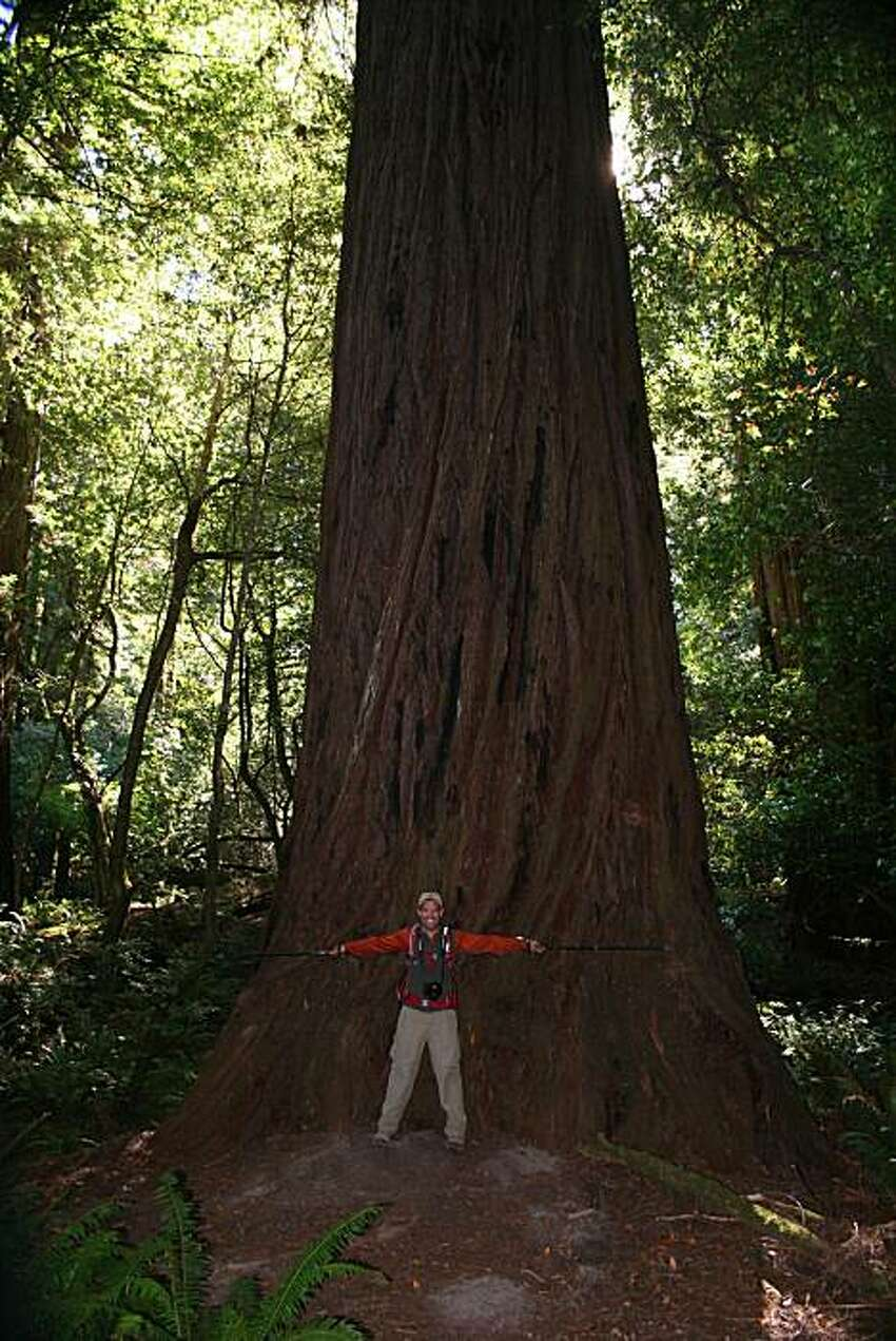 Meander along an 8-mile path shaded by redwoods and cut through by a babbling creek on your way to Tall Trees Grove, home to the Libbey Tree, which was once considered the tallest living tree in the world.