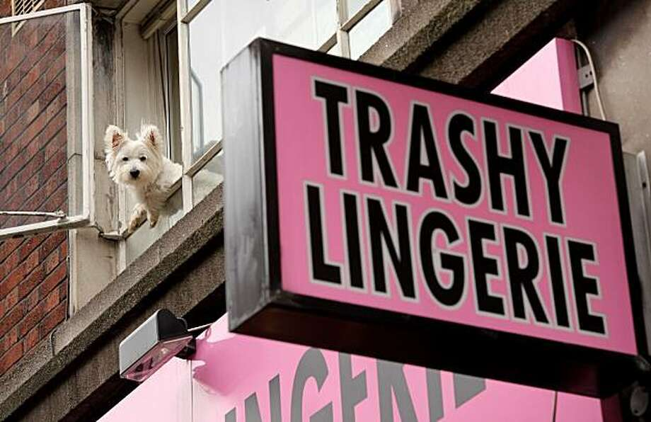 LONDON, ENGLAND - AUGUST 19:  A dog looks out from a first floor window above a lingerie shop in the Soho area of the City of Westminster on August 19, 2010 in London, England. Soho is approximately one square mile in area and has been long established as an entertainment district of London. It has a high density of bars, cafés, nightclubs, restaurants, theatres as well as fashion outlets and media offices. It is the centre of London?s gay district and is also synonymous with the sex industry, containing several adult shops and strip clubs. Former residents of Soho include: Karl Marx, Casanova, Canaletto, William Blake, Isaac Newton, John Logie Baird and Mozart.  (Photo by Oli Scarff/Getty Images) Photo: Oli Scarff, Getty Images