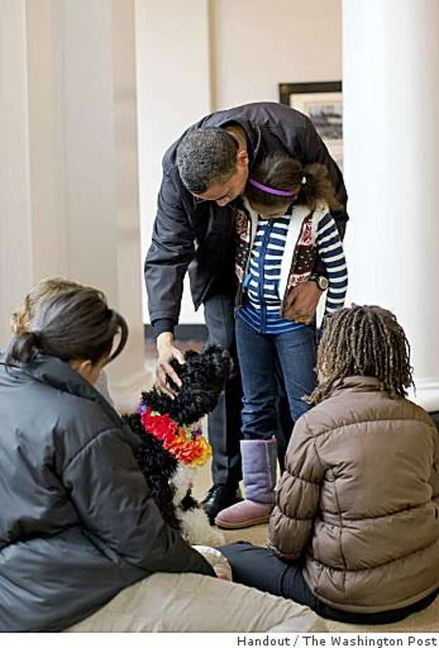"The Obama family gets to know their Portuguese water dog, which daughters Sasha and Malia have named Bo. The puppy was a gift from Sen. Edward Kennedy, who has three ""Porties."" A few weeks ago, there was a secret get-acquainted session with Bo and the Obama family at the White House. Illustrates OBAMA-DOG (category w), by Manuel Roig-Franzia (c) 2009, The Washington Post. Moved Saturday, April 11, 2009. (MUST CREDIT: White House photo by Pete Souza) Photo: Handout, The Washington Post"