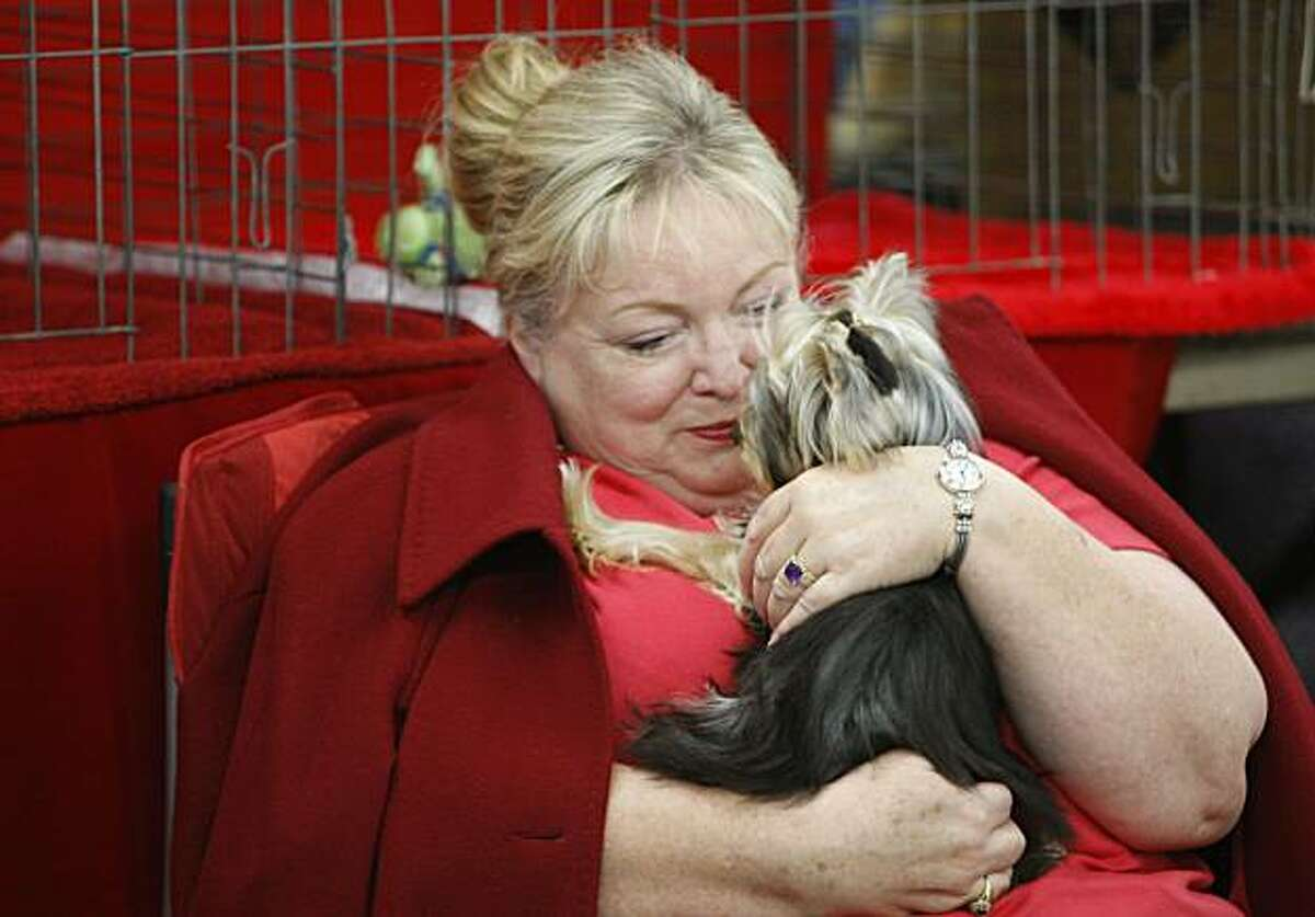 """Donna Peterson of Oakley, Calif. cuddles with """"Turner"""", a Yorkshire Terrior belonging to a fried at the 103rd annual Golden Gate Kennel Club All-Breed Dog Show at the Cow Palace in Daly City, Calif. on January 25, 2009."""