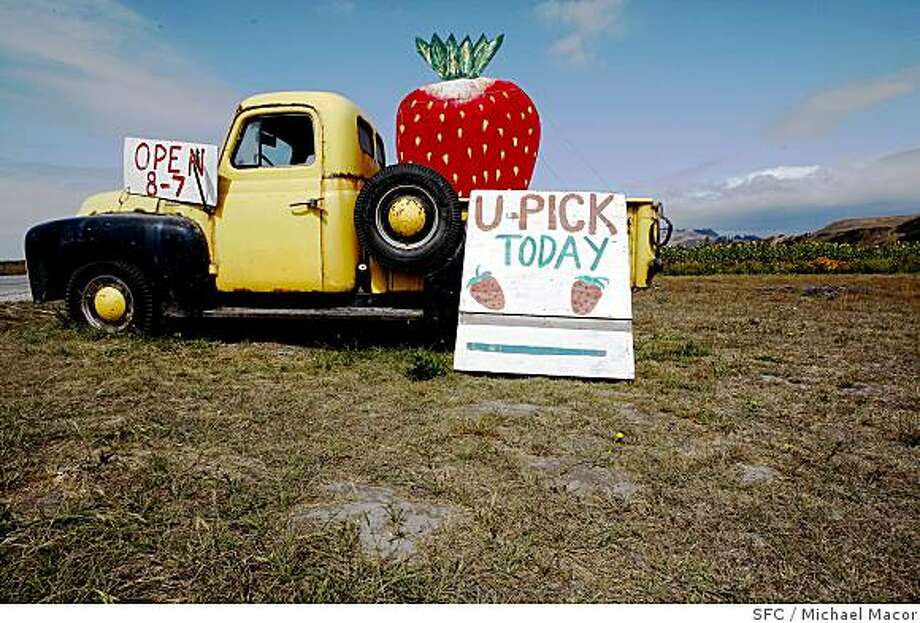A sign leads strawberry pickers to the Swanton Berry Farm in Davenport. Photo: Michael Macor, SFC
