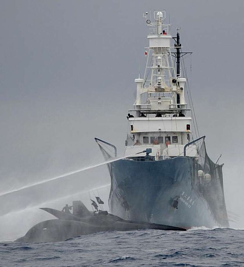 "This handout photo received and taken on January 6, 2010 from the Sea Shepherd Conservation Society shows the Sea Shepherd's ship Ady Gil (L-front), a wave-piercing boat formerly known as ""Earthrace"", being rammed by Japanese whaling vessel Shonan Maru No. 2 (R) in Antarctic waters. The space-age powerboat sent to harass Japanese whalers was rammed and sliced in two in its very first clash, activists said, dramatically escalating hostilities in icy Antarctic seas. All six crew on the Ady Gil trimaran, which holds the round-the-world record, were rescued unharmed, the Sea Shepherd animal rights group said in a statement.  RESTRICTED TO EDITORIAL USE  TOPSHOTS Photo: Joanne Mcarthur, AFP / Getty Images"