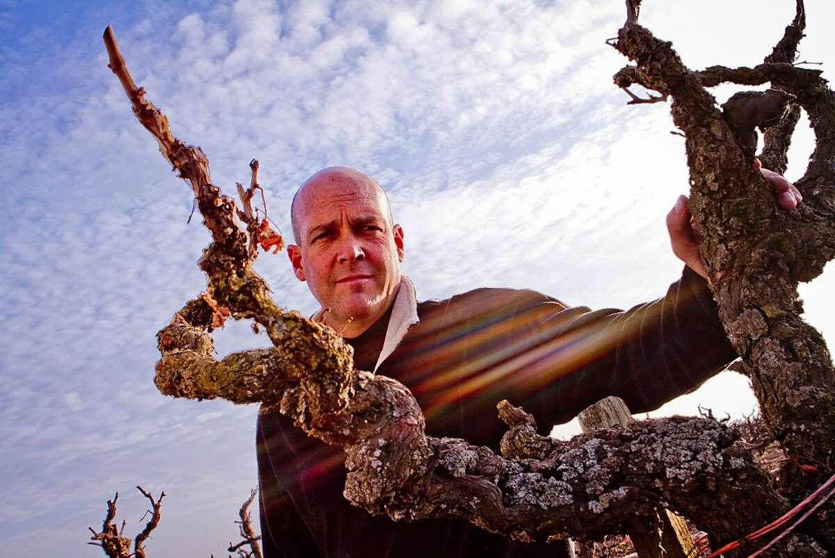 "Winemaker Michael McCay in the ""Truluck's"" Old Vine Zinfandel vineyard in Lodi, Calif., is seen on Wednesday, December 28th, 2011."