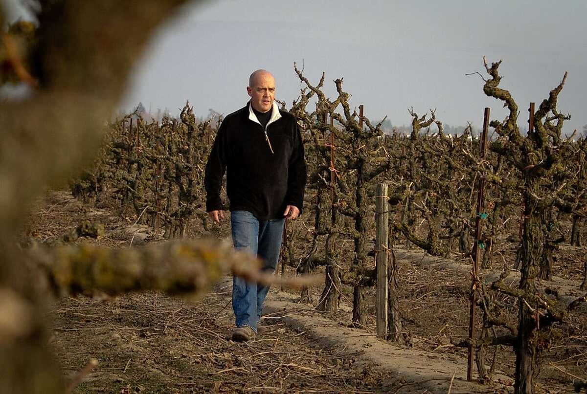 "Winemaker Michael McCay walks in the ""Truluck's"" Old Vine Zinfandel vineyard in Lodi, Calif., on Wednesday, December 28th, 2011."