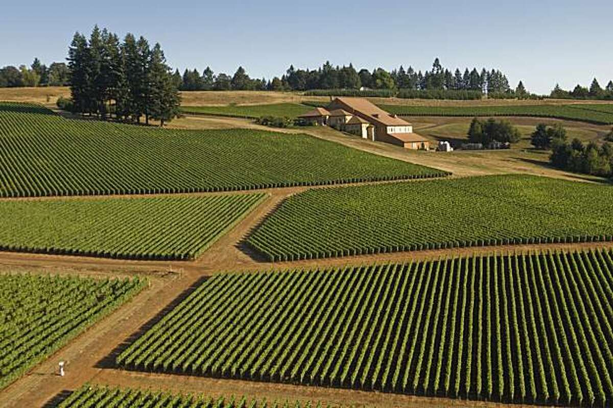 Domaine Drouhin winery and estate vineyards, Dundee Hills AVA, Willamette Valley, Oregon.