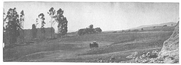 "The open area of Northbrae before development. Note the horse drawn carriage traveling through the area and the eucalyptus grove. Eucalyptus were planted as wind breaks, and to provide shade, lumber, and beauty in the late nineteenth and early twentieth century in Berkeley, commencing around 1875. This open ranchland was part of Boswell's Ranch until about 1893. Note that other than the planted non-native eucalyptus trees, the area was devoid of trees. From the book ""Eccentrics, Heroes, and Cutthroats"" by Richard Schwartz. Photo: Courtesy Richard Schwartz"