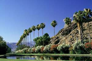 Palm trees, canyons and mountains on the horizon are some of the scenic attractions in the Coachella Valley, home to the modernist chic of Palm Springs and the simpler spas of Desert Hot Springs.