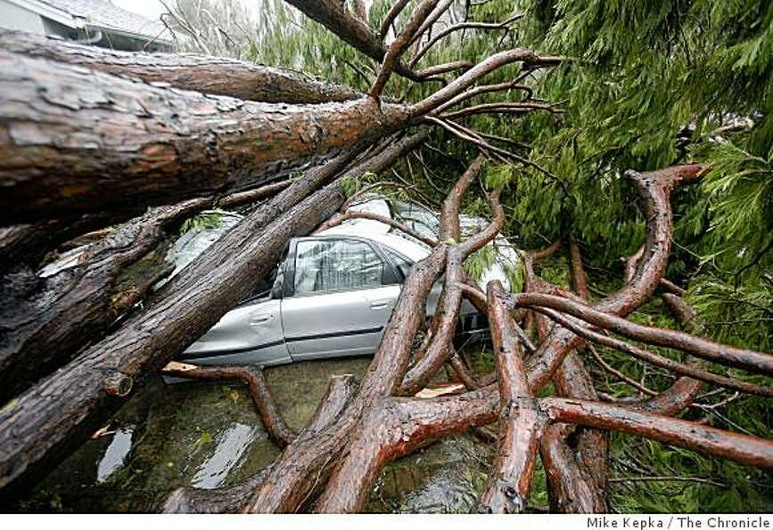 In Kentfield, Calif. a tree fell crushed a man's car and house. The residents are said to be out of
