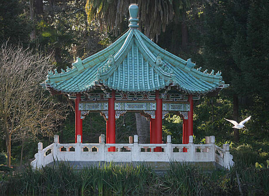 A bird flies near the Chinese Pavillion at Stow Lake in Golden Gate Park in San Francisco, Calif., on Friday, January 9, 2009. Photo: Mark Costantini, The Chronicle
