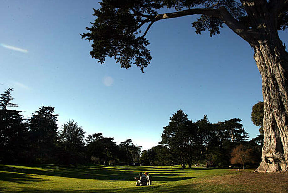 People enjoy the Great Meadow at the Gardens  in Golden Gate Park in San Francisco, Calif., on Friday, January 9, 2009. Photo: Mark Costantini, The Chronicle