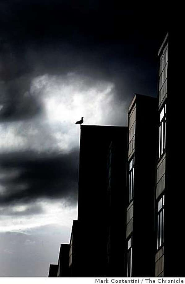 Rainy weather is forecast for the area and a bird sits among the gathering storm clouds on top of a building on Minna St. in San Francisco, Calif. on Thursday, February 12, 2009. Photo: Mark Costantini, The Chronicle