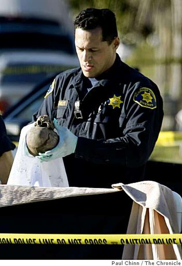 A coroner's investigator inspects a human skull after a road maintenance crew discovered the remains buried in mud on the 3000 block of Washington Street in Alameda, Calif., on Wednesday, Jan. 28, 2009. Photo: Paul Chinn, The Chronicle