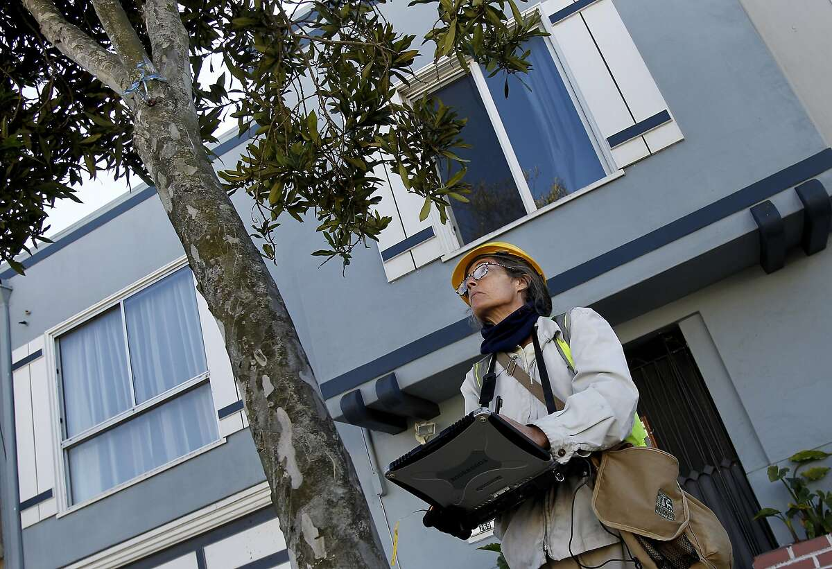 Arborist Wendy Wilkins examines and inspects a tree on Broad Street.