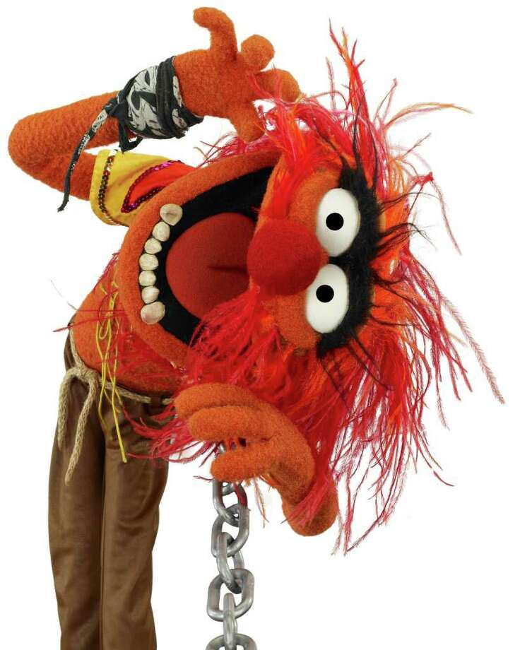 It doesn't get much crazier than the rock n' roll Muppet. Photo: John E. Barrett / ©Disney Enterprises, Inc. All Rights Reserved.