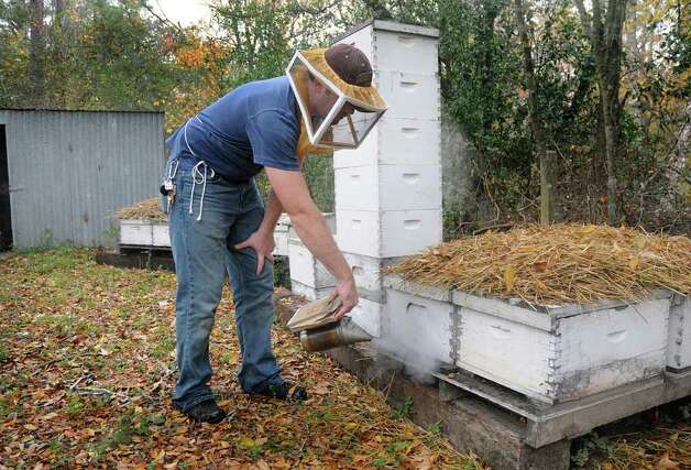 Beekeeper Conrad Craft uses his spatula to show where the queen bee is in the hive, near the left point. Both small scale and commercial beekeepers are worried about the health of their hives and honey crops because of the extended drought. Craft has been working on nursing the bees and their hives back to a healthy state. Photo: David Hopper / freelance