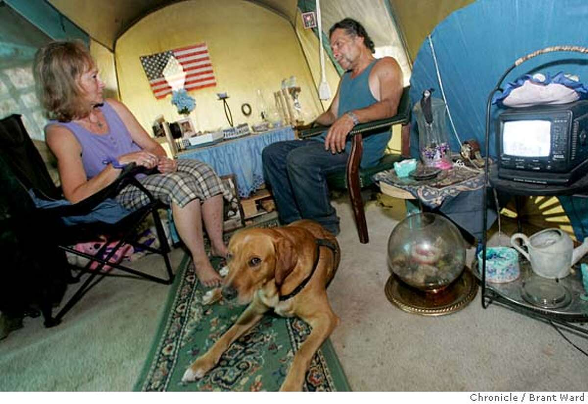 homeless_suburbs124_ward.jpg Vicki Brewer, left, and her boyfriend Steve, relax in the tent home they have set up on the creek. They can even watch television run by a battery. Homeless are a face of life in the Bay Area. Some counties do a good job servicing the homeless, but Solano County is lagging behind. One of the fastest growing counties in the Bay Area, Solano County spends the least on homeless programs. In Fairfield, the county seat of Solano County, many of the homeless live a very rural life. One large group lives in and around Ledgewood Creek where the homeless share the area with an abundance of wildlife including a healthy beaver population. 7/14/05