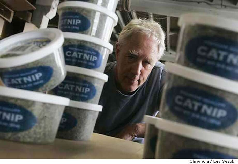 "catnip13_015ls.JPG  Neil Hanscomb. In foreground are some tubs of the High Grown Catnip.  Description:� As part of our tribute to Bay Area cat culture in the Nov. 13 Pink section, we check in with one of San Francisco's biggest catnip dealers.  Neil Hanscomb, owner of the San Francisco Herb Co.has beening running the special ""herb"" since the 70s. But it wasn't until the year 2000 that Hanscomb started dealing ""HIGH GROWN CATNIP"". This is good bud that comes from farmers up north in Canada. The Canadians know their nip, and have some of the best kitty crop on the continent. Hanscomb, a dog person, deals with all kinds of spices, mostly garlic and cinnamon, but is obsessed with catnip. he's currently working on prototype catnip toys and getting ready for a mega marketing explosion across the country sooon. Photo taken on 10/31/05 in San Francisco, CA. Photo by Lea Suzuki/ The San Francisco Chronicle /MAGAZINES OUT Photo: Lea Suzuki"