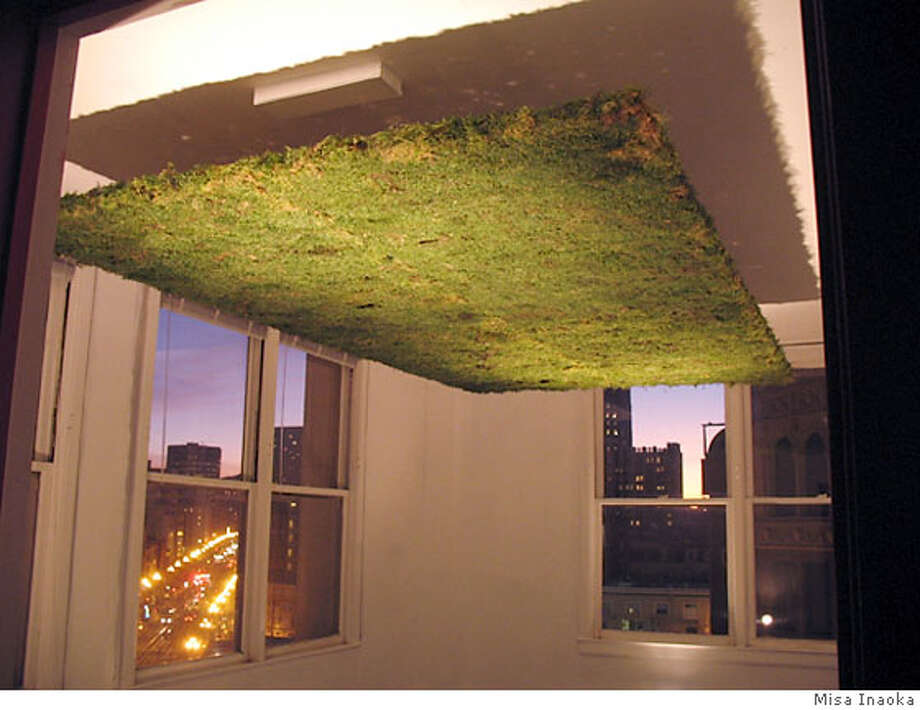 "Misa Inaoka's piece, ""Moss Ceiling"", is part of the ""Excavations"" group show Photo: Misa Inaoka"