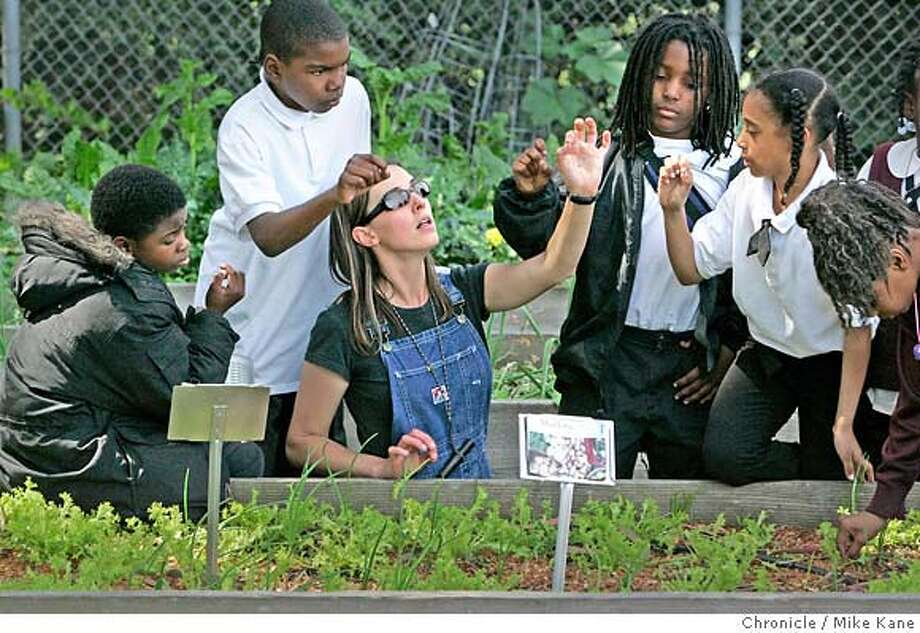 GREENSKULS_016_MBK.JPG  Garden coordinator Sybil Tate demonstrates to fourth-graders how to pinch leaves from greens growing in a garden plot to be used in a salad that they would later eat at Willie Brown Jr. Elementary in San Francisco, CA, on Thursday, March, 29, 2007. photo taken: 3/29/07  Mike Kane / The Chronicle ** Sybil Tate Photo: MIKE KANE